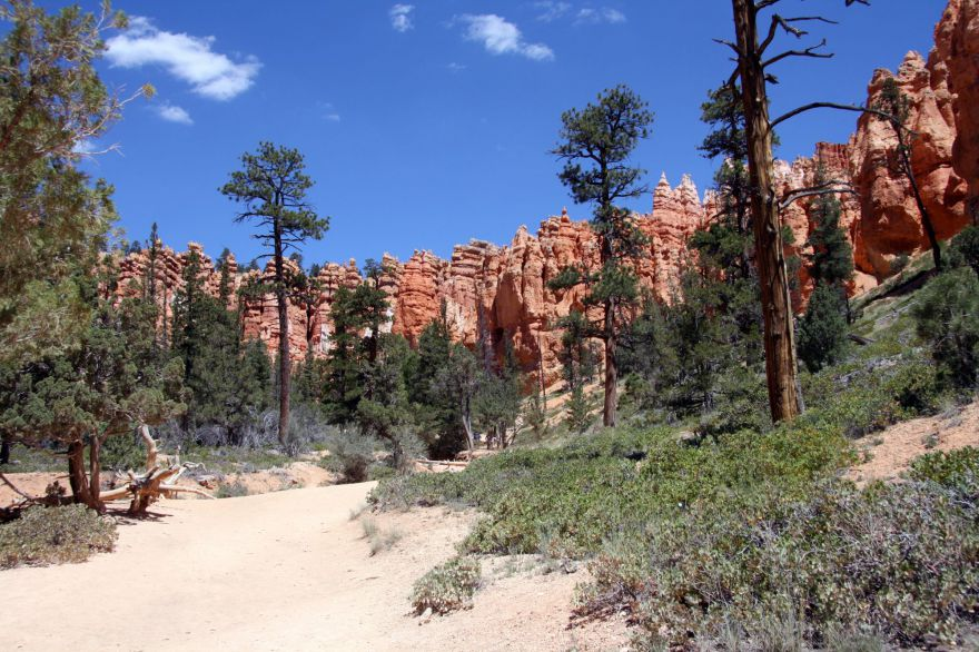 Queens Garden & Navajo Loop in Bryce Canyon